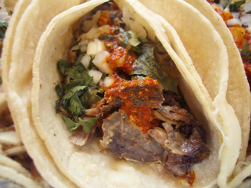 barbacoa taco from tehuitzingo