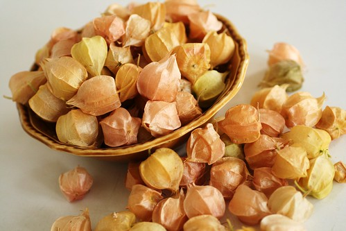 Ground cherries in bowl