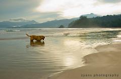 Palawan Escapade (zyans) Tags: spiritphotography palawan learmaniniyots