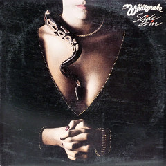 No Salma Hayak (epiclectic) Tags: music records art headless vintage artwork snake album vinyl retro jacket cover 1984 lp record cleavage whitesnake recordings sleeves epiclectic safesafe