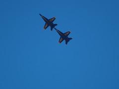 Tip to Tail 7142 (mliu92) Tags: show air navy hornet 2008 blueangels miramar mcas fa18