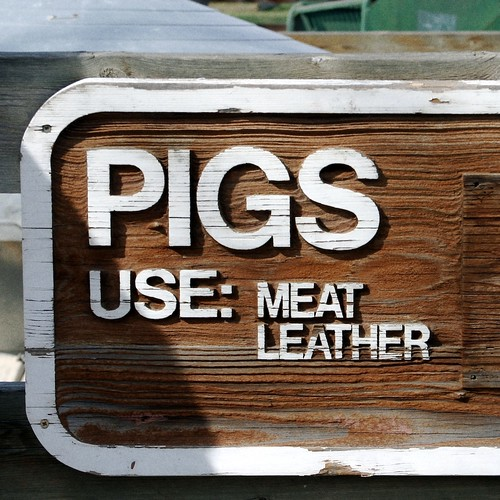 Pig Utility