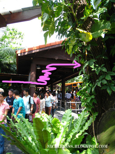 queue at sentosa 3