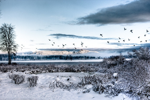 Lake Quamichan