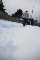 Passage to naoyai's place in winter (shinyai) Tags: snow japan aomori hirosaki