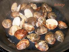 Almejas marinera-abrimos almejas