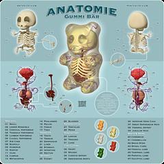 Anatomía de una gominola