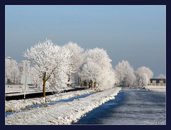 Wonder of nature.... ( Annieta  Off / On) Tags: trees winter white snow cold holland color nature netherlands dutch digital ilovenature frost hiver nederland thenetherlands natuur powershot s2is polder rs paysbas canonpowershots2is 2009 soe couleur allrightsreserved januari canonpowershot koud zuidholland kleur vorst rijm krimpenerwaard rijp outstandingshots annieta abigfave shieldofexcellence diamondheart anawesomeshot ultimateshot crystalaward concordians exploreunexplored fbdg theperfectphotographer goldstaraward multimegashot paisajesdepueblosycampos goldenart ~newenvyofflickr~ flickrsmasterpieces cubeexcellency usingthisphotowithoutpermissionisillegal mygearandme mygearandmepremium mygearandmebronze mygearandmesilver mygearandmegold mygearandmeplatinum mygearandmediamond