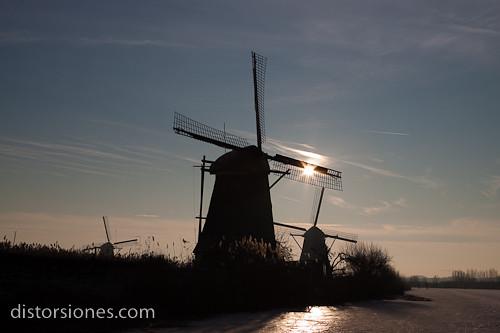 Luces y sombras entre molinos de Kinderdijk