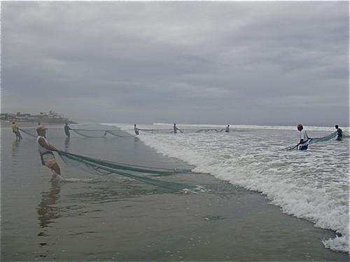 Ecuador-sea-food