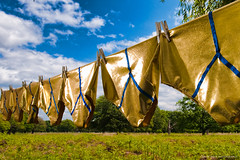 Pants in the Park (conorwithonen) Tags: charity london bluesky clothesline yfronts richmondpark blueribbon lightroom clothespegs greengrass whiteclouds fluffyclouds policepresence prostatecancer strobist chasejarvis nikond3 nostrobistinfo nikon1424mmf28 shinyunderwear pantsinthepark prostateuk goldenpants unusualphotographs triggeredbypocketwizards removedfromstrobistpool sb800farleftthroughstofen sb800onmonopodheldtocameraleft shootfirstaskpermissionlater