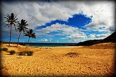 Getaway dream (GlossyEye.) Tags: chile seascape beach beautiful landscape photography la sand nikon paradise 55mm easterisland fa rapanui polynesian anakenabeach differenza  lamicizia nikond40  lamiciziafaladifferenza picnikorpicnic