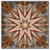 Design 1 (Tree limbs ) ~(K-FUN#11)~ (Gravityx9) Tags: abstract multicolored magical specialeffects 0308 blogthis smorgasbord ithink kfun psart eyecandyart coloursplosion antpix kaleidospheres kfunmedallists 032208 kfun11
