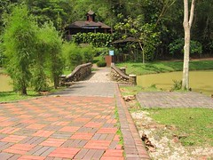 bamboo-rock2 (rhmn) Tags: pictures gardening outdoor landscaping rustic bamboo malaysia tropical danial plans ideas squidoo ieman