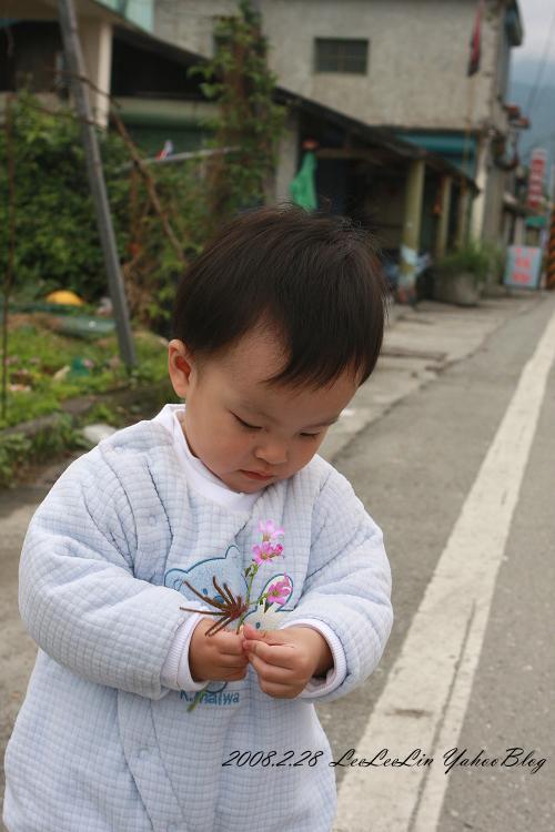 豐田移民村