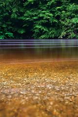 Barcode (jasontheaker) Tags: river movement force midsummer wind yorkshire pebbles gale peat scum wharfedale wharfe landscapephotography longexposure jasontheaker riskybusiness