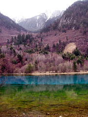 China Travel - Jiuzhaigou, Sichuan  (Lao Wu Zei) Tags: china travel nature photos 200views favourite  sichuan  jiuzhaigou worldheritage