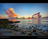 Storm Clouds at Sunrise (Fraggle Red) Tags: ocean morning pink orange cloud water sunrise dawn rocks florida limestone bec soe hdr stormcloud canonefs1022mmf3545usm jupiterisland roq wonderworld blueribbonwinner hobesound martinco outstandingshots 3exp oceanshore bej worldbest shieldofexcellence impressedbeauty ultimateshot amazingamateur blowingrockspreserve betterthangood dphdr poseidonsdance águasdivinas jupitersound novavitanewlife
