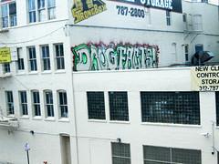 Drug Fact (EMENFUCKOS) Tags: chicago graffiti drug fact chicagograffiti