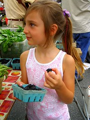 Fresh Picked Blackberries at the Amherst Farmers Market - (c) Sienna Wildfield