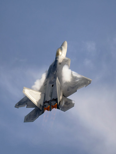 Fighter airplane picture - F-22