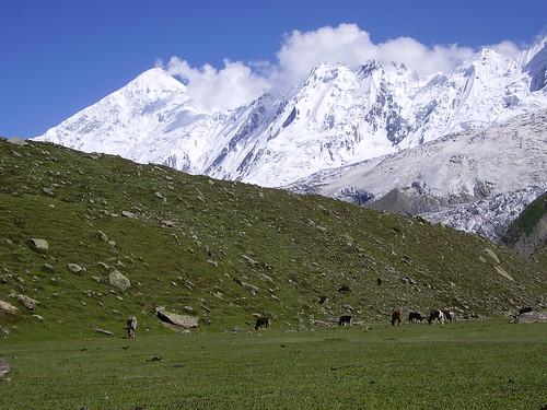 Deran Peak with Rakaposhi massif