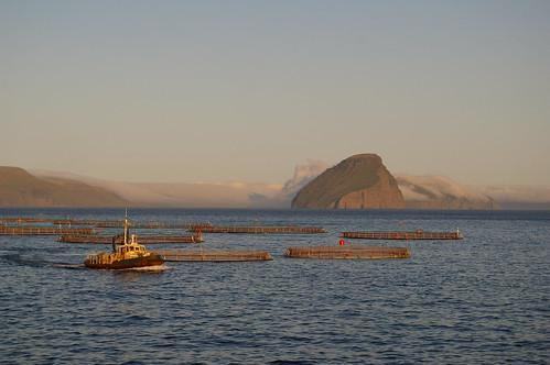Faroe Islands - fisheries