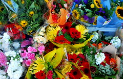18 Kinds of Happy (battyward) Tags: pink flowers blue red orange color green floral colors rose yellow shop happy colorful bright vivid sunflower bunch daisy bouquet multicolor cutflowers coloursplosion colorsinourworld thepandorasbox