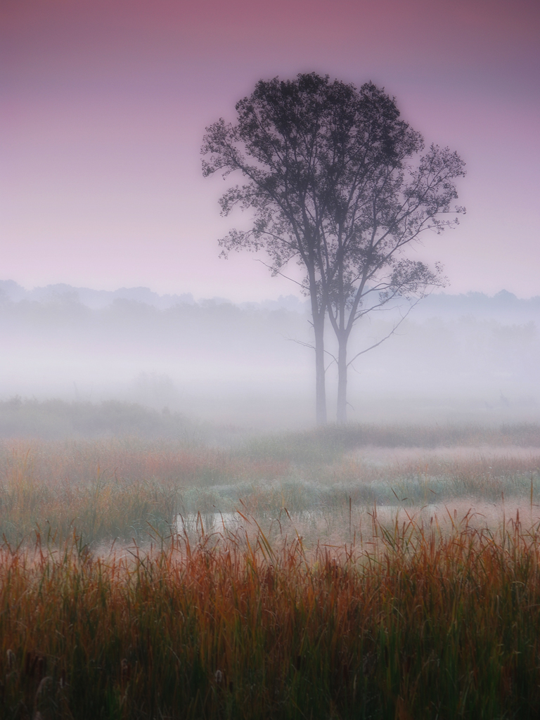 Misty autumn dawn by James Jordan