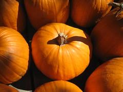 Superfood Sunday – Pumpkins