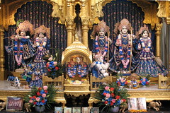 Bhaktivedanta Manor / Hare Krishna Temple (T.O. Wong) Tags: england elephant temple cow shrine hanuman nandi krishna manor hindu hinduism sita watford radha deities harekrishna aldenham iskcon lakshmana bhaktivedanta gokulananda radhagokulananda