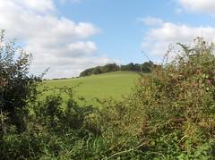 a szép angol vidék