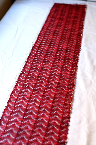 Fiona's Scarf Blocking