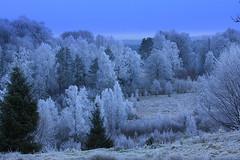 Winterlandscape (i.thelin) Tags: natur smland ingemar thelin a i width48 height48 hrefhttpwwwflickrcomgroupsbrillianteyejewelsimg srchttpfarm4staticflickrcom30582591716817a7356e51fctjpg