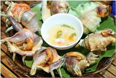 Cebu SuTuKil - Sinugbang Saang (Grilled Spider Shell) (JoLiz) Tags: city food spider interestingness flickr philippines shell fresh explore shellfish cebu seafood filipino vinegar pk cebucity grilled pinoy mactan lapulapu philippine sutukil top500 explored puntaengao pinoykodakero flickristasindios saang joliz litratistakami garbongbisaya sinugbang