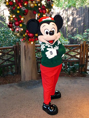 Meeting Mickey Mouse in his Christmas outfit