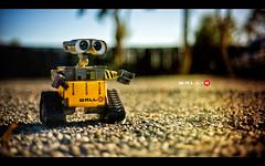 WALL-E (isayx3) Tags: wallpaper wall 50mm nikon bokeh disney e 18 d3 fifty nifty walle 50mmf18af challengeyouwinner disneyphotochallengewinner plainjoestudios