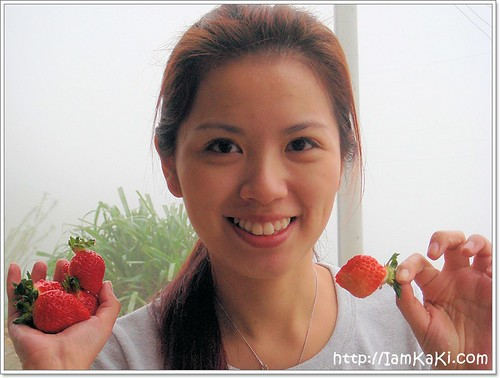 strawberry00