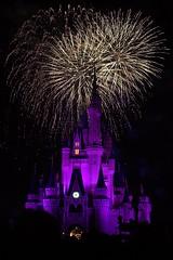 [フリー画像] [人工風景] [建造物/建築物] [城/宮殿] [マジックキングダム] [ディズニーランド] [夜景] [花火] [アメリカ風景]   [フリー素材]