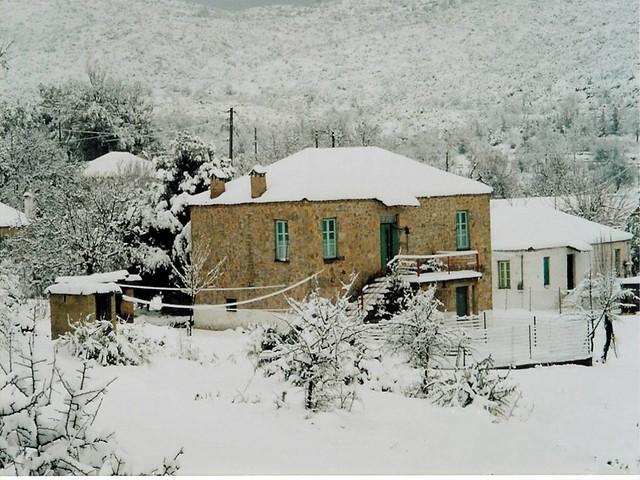 Πελοπόννησος - Αρκαδία - Δήμος Λεωνιδίου Αμυγδαλιά