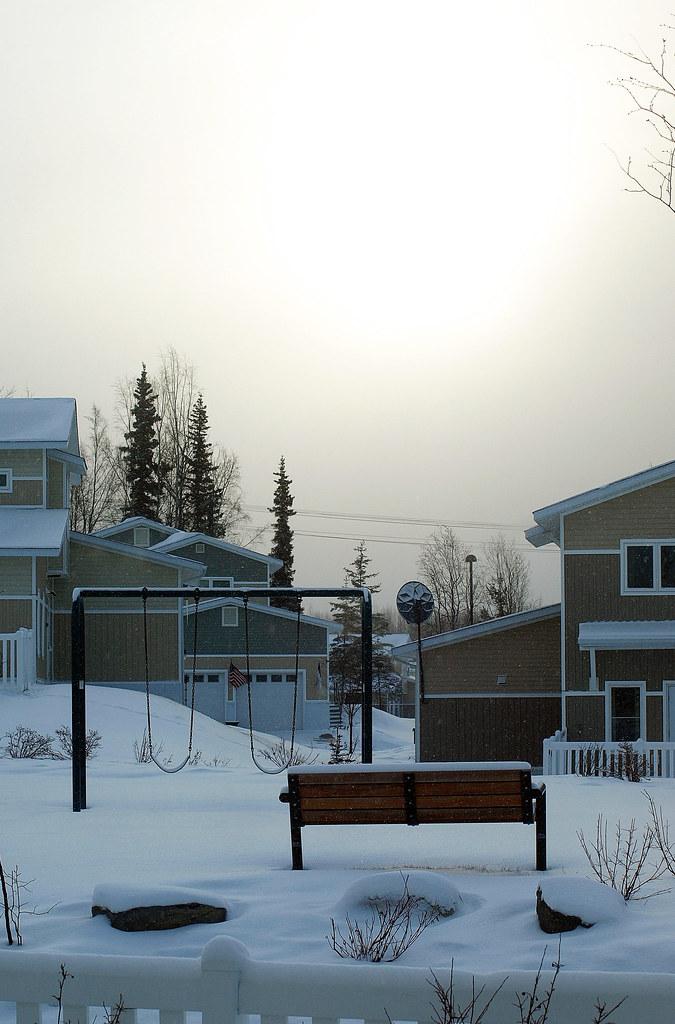sunny snowfall_3563_edited-2