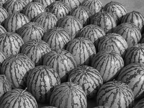 Day 17 B n W melons