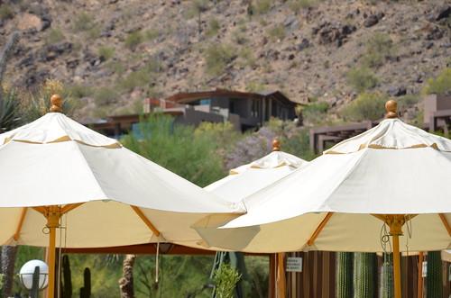 Arizona 2011 206