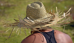 Pasifika (Peter Jennings 19.5 Million+ views) Tags: park new festival hawaii polynesia islands state cook peter auckland zealand springs nz western maori aotearoa aloha tonga jennings aroha oceania 2014 pasifika