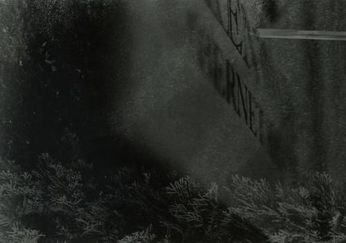 Taelor corpse3