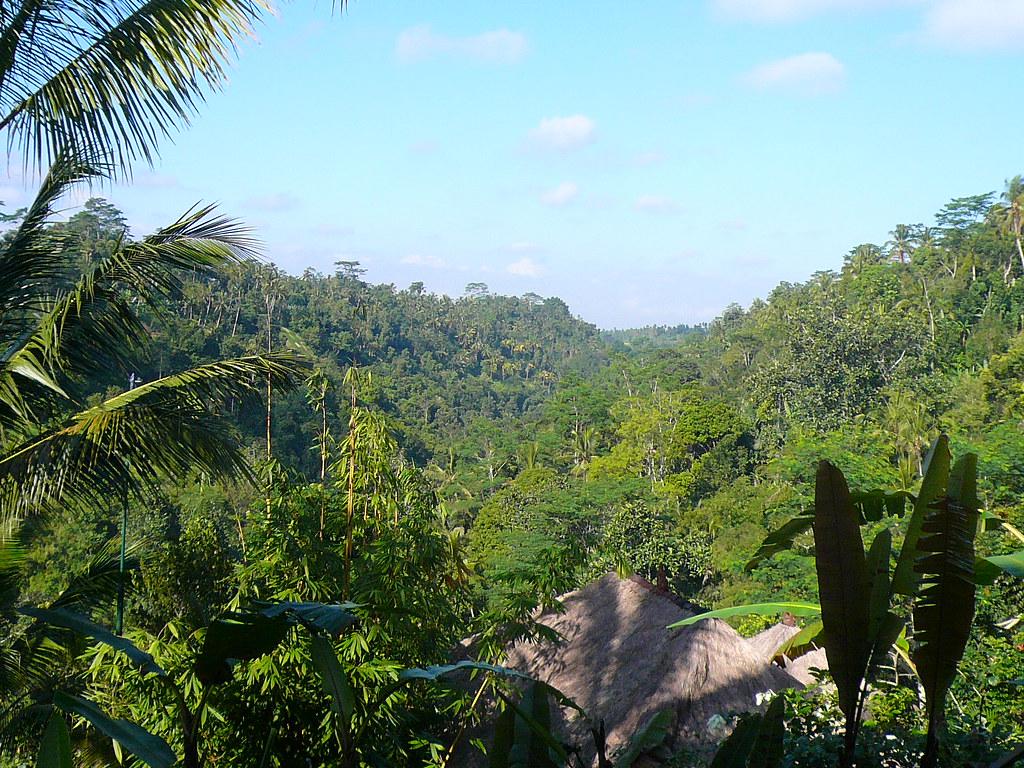 صورة لفندق Ubud Hanging Gardens _ صور فندق في جزيرة بالي ..اندونسيا