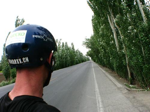 Tree lined National Highway 312 east of Shanshan, Xinjiang, China