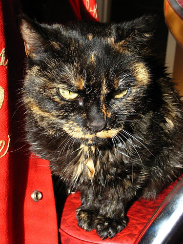 BeBe Louise 1993- 2008