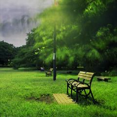park benches (F_blue) Tags: tokyo hasselblad koganeipark 500cm fujicolor  planart pro160nc c8028 fblue2008