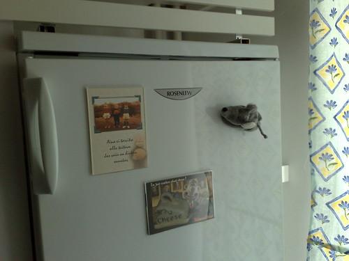 Jääkaapin ovi